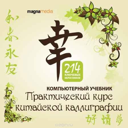 Купить Практический курс китайской каллиграфии: 214 ключевых иероглифов
