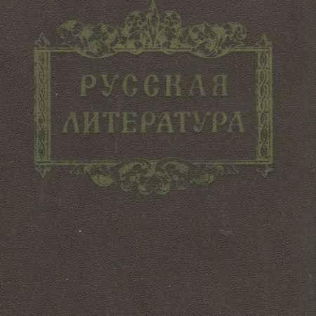 Купить А. А. Кайев Русская литература
