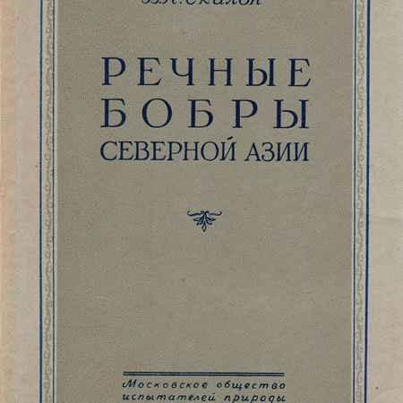 Купить В. Н. Скалон Речные бобры Северной Азии