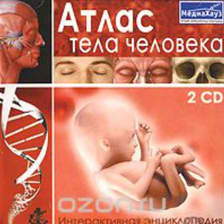 Купить Атлас тела человека