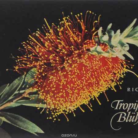 Купить Walter Richter Tropisches Bluhen