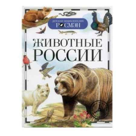 Купить Книга Росмэн Детская энциклопедия Животные России 57475