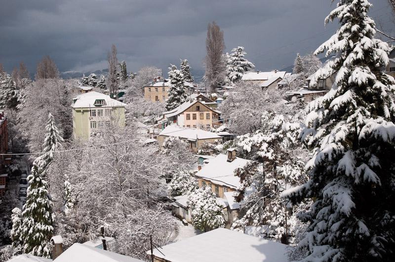Что посмотреть в Сочи зимой