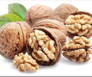 Польза грецкого ореха: правда или вымысел