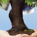 Как создать венчурный фонд