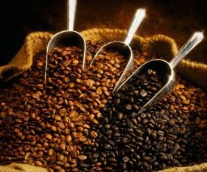 Какой зерновой кофе самый лучший