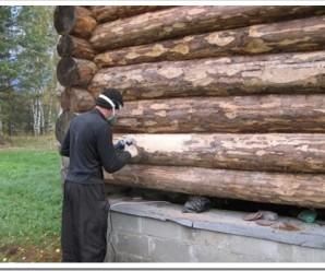 Популярные типы лесоматериалов: какой предпочесть?