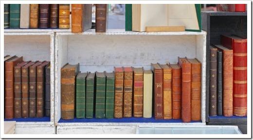 Рукописные и печатные книги
